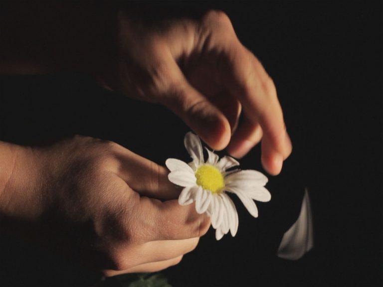 Eine Plastikblume wird in einer Hand gehalten. Der Blume fehlen einige Blütenblätter.